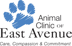 Animal Clinic of East Avenue